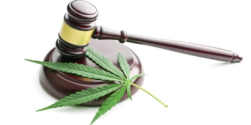 cbd law and regulations