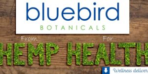 BlueBird Botanicals CBD Review (2018 Update)