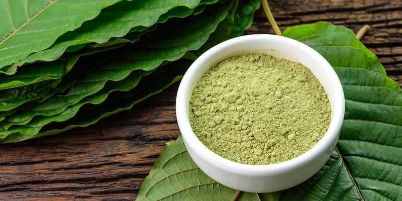 Image result for Recommended Kratom Strains for Motivation
