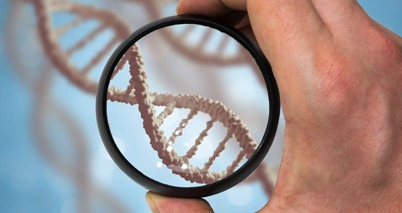 Genetics Effect CBD Usage