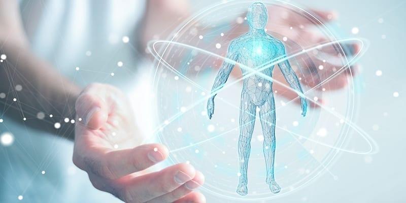 Human body genetics