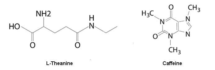 l-theanine caffeine molecules