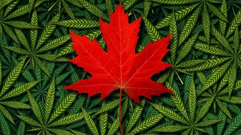 Canada Weed Legal