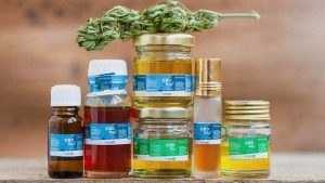 cannabis hemp oil potency