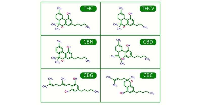 cannabinoids compounds